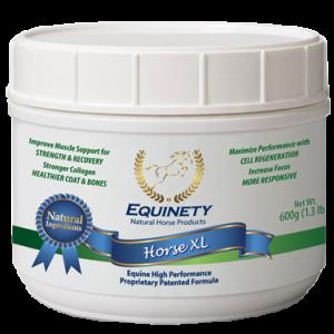 Equinety Horse